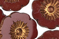 Czech Glass Bronzed Oxblood Hibiscus Coin 22mm