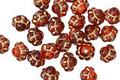 Czech Glass Pomegranate Picasso Bali Style 6mm