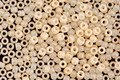 TOHO Sueded Gold Opaque Light Beige Hybrid Round 11/0 Seed Bead