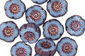 Czech Glass Bronzed Alice Blue Hibiscus Coin 9mm