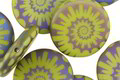 Czech Glass Laser Etched Ammonite on Wasabi Green w/ Rainbow Finish Coin 16mm
