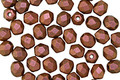 Czech Fire Polished Glass Polychrome Copper Rose Round 4mm
