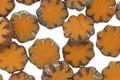 Czech Glass Mustard Picasso Daisy 9mm