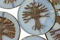 Czech Glass Blue Opal Tree of Life Coin 22mm