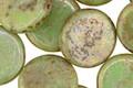 Czech Glass Bronzed Spring Green Coin 15mm