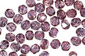 Czech Fire Polished Glass Luster Transparent Amethyst Round 4mm