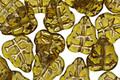 Czech Glass Dark Smoky Topaz w/ Gold Leaves 11x9mm