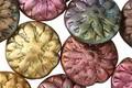 Czech Glass Autumn Metallics Dahlia Coin 14mm