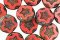 Czech Glass Pink Silk Starflower Coin w/ Scalloped Edge 10mm