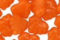 Czech Glass Tangerine Maple Leaf 10x13mm