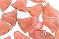 Czech Glass Bronzed Pink Opal Tulip 9mm