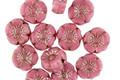 Czech Glass Desert Rose w/ Silver Hibiscus Coin 7mm