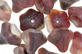 Czech Glass Matte Berry Mix Bellflower 9x10mm