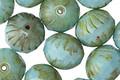 Czech Glass Sweet Mint Picasso Cruller 10x11mm
