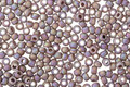 TOHO Semi-Glazed Rainbow Lavender Round 11/0 Seed Bead