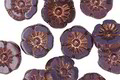 Czech Glass Bronzed Plum Passion Hibiscus Coin 10mm