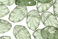 Czech Glass Tourmaline Green Fan Leaf 8x12mm