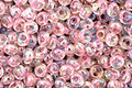 TOHO Transparent Rainbow Ballerina Pink Magatama 3mm Seed Bead