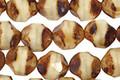 Czech Glass Toasted Coconut Chandelier Cut 8mm