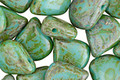Czech Glass Green Turquoise Picasso Briolette 11x12mm