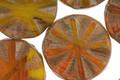 Czech Glass Butternut Squash Flower Window Coin 18mm