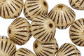 Czech Glass Dark Cream African Bicone 11mm