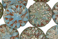 Czech Glass Turquoise Picasso w/ Gold Luster Dahlia Coin 14mm