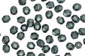 Czech Fire Polished Glass Emerald Metallic Suede Round 3mm