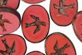 Czech Glass Pink Silk Oval w/ Soaring Bird 15x11mm
