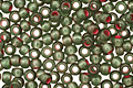 TOHO Olivine (with Frosted Silver & Pink Lining) Round 11/0 Seed Bead