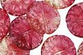 Czech Glass Strawberry Bellini Dahlia Coin 14mm