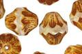 Czech Glass Butter Pecan Baroque Bicone 13x11mm