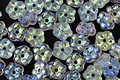 Czech Glass AB Crystal Bali Style Daisy Spacer 2x5mm