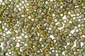 TOHO Semi-Glazed Rainbow Olive Round 11/0 Seed Bead