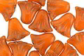 Czech Glass Bronzed Pumpkin Tulip 9mm