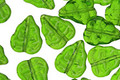 Czech Glass Bright Green Leaves 11x9mm