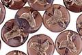 Czech Glass Purple Opaline w/ Silver Bird Coin 11mm