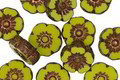 Czech Glass Bronzed Chartreuse Hibiscus Coin 10mm