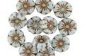 Czech Glass Bronzed Powder Blue Hibiscus Coin 7mm