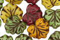 Czech Glass Early Autumn Mix Maple Leaf 10x13mm