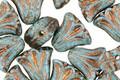 Czech Glass Bronzed Turquoise Tulip 9mm
