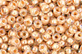 TOHO Rainbow Crystal (with Apricot Lining) Round 11/0 Seed Bead