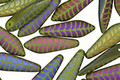 Czech Glass Laser Etched Leaf on Matte Olive w/ Rainbow Finish 5x16mm