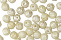 Czech Glass Ivory Mercury Melon Round 4mm