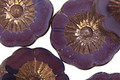 Czech Glass Bronzed Plum Passion Hibiscus Coin 22mm