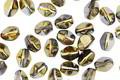 Czech Glass Iris Brown Pinch Bead 5x4mm