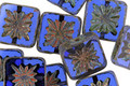 Czech Glass Sapphire Picasso Flower Window Square 10mm