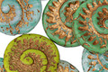 Czech Glass Bronzed Opaque Aloe Ammonite Coin 17mm