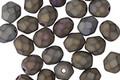 Czech Fire Polished Glass Matte Iris Brown Round 6mm