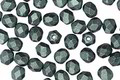 Czech Fire Polished Glass Emerald Metallic Suede Round 4mm